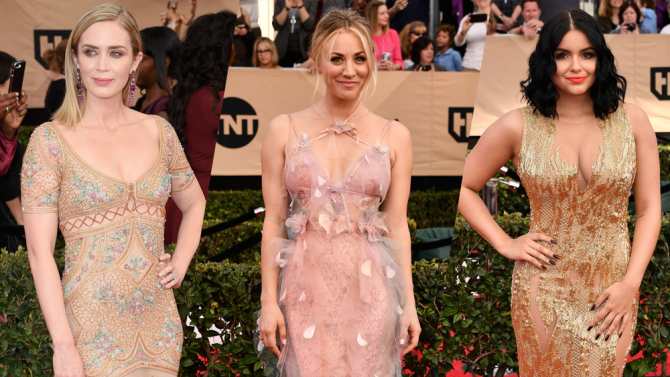 Celebrities Dazzle in Embellished Gowns at 2017 Screen Actors Guild Awards